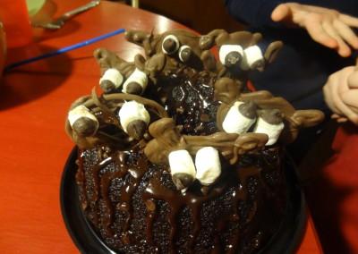 2013-02-02 Cake 01
